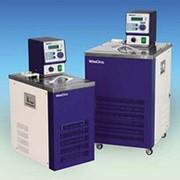 Термостат циркуляционный низкотемпературный WCL-Р30 фото