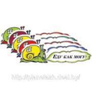 02427 наклейка «Еду как могу! (улитка) «наружная, (цвета ассорти), 10х29 см фото