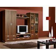 Мебель для гостиной под заказ фото