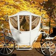 Свадебная карета модель 5 фото