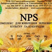 Микроудобрения - Комплекс для живлення зернових культур та кукурудзи NPS (10:25:10) фото