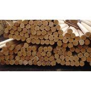 Технологическое сырье бук граб сырье древесное Одесса Порт фото