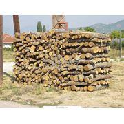 Продажа дров в любом количестве фото
