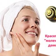 Муцин улитки Ахатин (NEW!!!) 10 мл фото