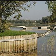 Сваи для водоемов. Деревянные сваи из дуба для укрепления берега фото