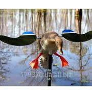 Чучело утки с вращающимися крыльями Baby Mojo Duck Decoys фото