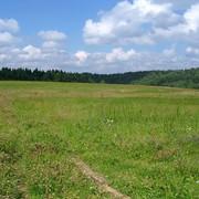 Продається земельна ділянка комерційного призначення. фото