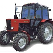 Трактор Беларус-82-1 фото