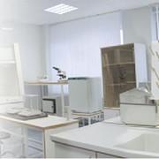 Мебель лабораторная ЛАБ фото