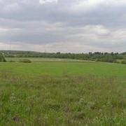 Земельный участок 3 ГА, 75 км от МКАД по Киевскому ш. фото