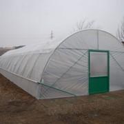 Фермерская теплица туннельного типа (из оцинкованного сталья или черного металла) фото