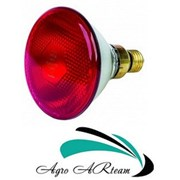 Инфракрасная лампа 100 Вт красная PAR (Польша) фото