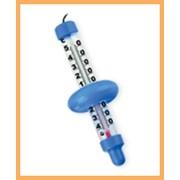Термометры водные фото