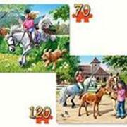 Пазл Castorland Животные 2 Puzzle 70х135 Верховая езда фото