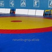 Покрытие для спортзала, борцовский ковёр, татами для единоборств. фото