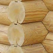 Антисептики, отбеливатели и огнебиозащита для древесины. фото