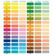 Краситель Sniezka Colorex фото
