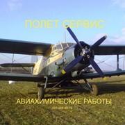 Авиарасселение трихограммы самолетом Ан-2 фото