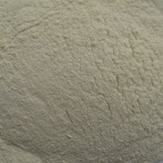 Порошок топинамбура ( порошок топінамбура) фото