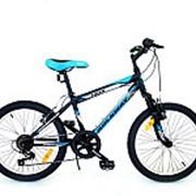 Велосипед горный rockway tiger 204004r/02 фото