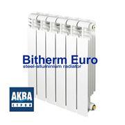 Радиатор BITHERM Euro 350/80 фото