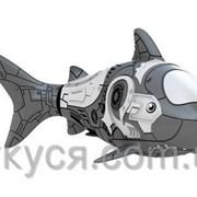 Роборыбка акула фото