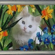 Наборы для вышивания бисером Котенок в цветах фото
