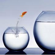 """Тренинг личностного роста """"Секреты уверенности в себе - Как избавиться от чувства вины навсегда"""" (Одесса) фото"""
