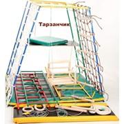 Детский спортивный комплекс Тарзанчик фото