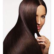 Пересадка волос (брови) клиника Украина Запорожье фото