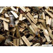 Доставка дрова дуб граб Житомирская область фото