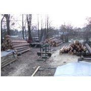 Распиловку древесины на заказ фото
