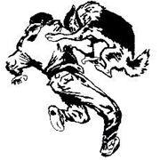 Профессиональная дрессировка - гарантия результата: послушание; собака-телохранитель; корректировка поведения (отучим собаку от нежелательных действий); охрана дома, квартиры, офиса фото