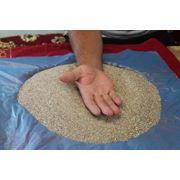 Псаммотерапия— метод лечения с использованием горячего песка фото