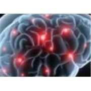Лечение заболеваний головного мозга позвоночника и спинного мозга периферической нервной системы фото