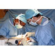 Услуги лечения в Израиле фото