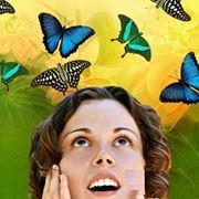 Фейерверк на свадьбу Салют из бабочек фото
