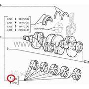 Вкладыши коренные с полукольцами STD 1.2 8v Doblo 2000-2005 71731844 (71731846) фото