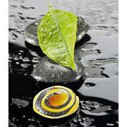 """Обучение SPA-депиляции (шугаринг) сахарной пастой PANDHY'S™ """"New"""" Обучение сахарной депиляции Pandhy's  Обучение шугарингу Пандис фото"""