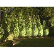 Освещение в саду фото