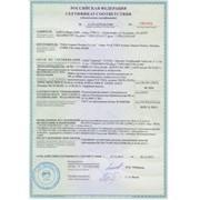 Сертификат соответствия ТР России фото