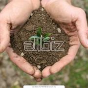 Исследования, услуги консультантов по анализу грунтов и почв. фото