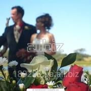 Услуги свадебного фотографа. Полный свадебный день фото