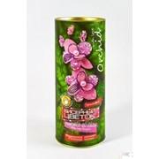 Бисерные цветы SocButtons v1.5Орхидея От 10 лет фото