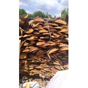 дрова Чернигов фото