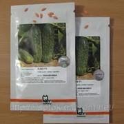 Семена Огурец Аякс F1 1000 семян Nunhems фото