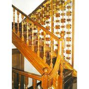 Сибирская лиственница кедр сосна сибирская. Покраска. Монтаж под ключ фото