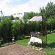 Разбивка участка под озеленение фото