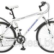 Велосипед Stinger Element 26 купить в Минске фото