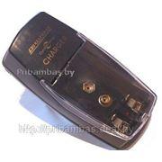 Зарядное устройство для АА / ААА пальчиковых аккумуляторов Ni-Cd, Ni-MH RexPower RP866 (для 2 шт. AA (LR 6) или AAA (LR 03), 1 шт. 9V) фото